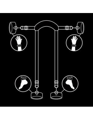 Submissive posición master con 4 esposas fetish